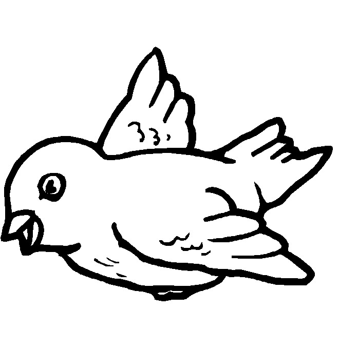 Baby bird coloring pages for kids